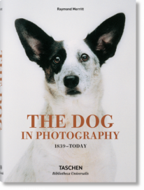The Dog in Photography 1839–Today -